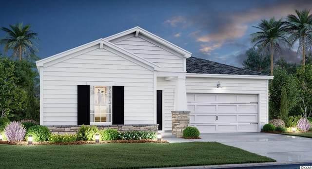 527 Salty Pine Dr., Myrtle Beach, SC 29588 (MLS #2122731) :: BRG Real Estate