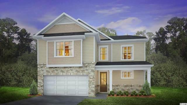 263 Calhoun Falls Dr., Myrtle Beach, SC 29579 (MLS #2122918) :: Jerry Pinkas Real Estate Experts, Inc