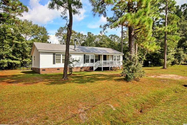 596 Todd Blvd., Conway, SC 29526 (MLS #2122948) :: Scalise Realty