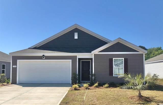 534 Sugar Pine Dr., Conway, SC 29526 (MLS #2123003) :: Duncan Group Properties