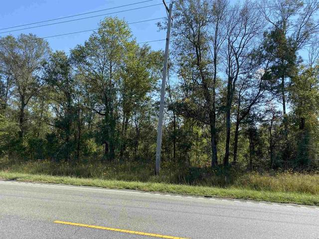 TBD Highway 701 South, Conway, SC 29527 (MLS #2123380) :: Brand Name Real Estate