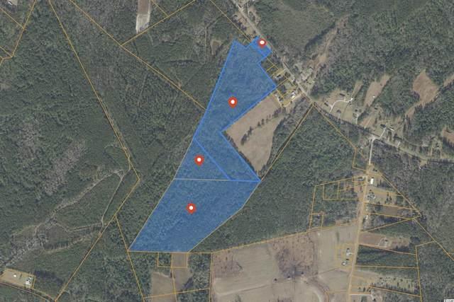 TBD Wright Rd., Loris, SC 29569 (MLS #2123558) :: Homeland Realty Group
