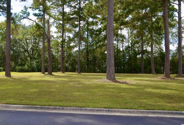 144 Pottery Landing Dr., Conway, SC 29527 (MLS #2123933) :: Jerry Pinkas Real Estate Experts, Inc