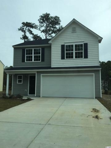156 Bendick Ct., Little River, SC 29566 (MLS #1709033) :: The Trembley Group