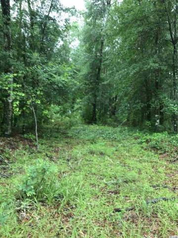 Lot 3 Mohican Dr., Georgetown, SC 29440 (MLS #1712459) :: The Hoffman Group