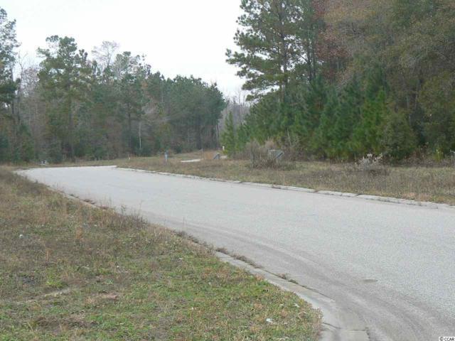 2 lots Red Bluff Village, Longs, SC 29568 (MLS #1712938) :: Hawkeye Realty