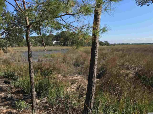 3.4 Acres Rybolt Road, Pawleys Island, SC 29585 (MLS #1724274) :: James W. Smith Real Estate Co.