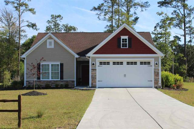 145 Springtide Drive, Conway, SC 29527 (MLS #1724324) :: Myrtle Beach Rental Connections