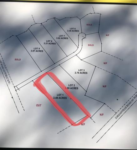 Lot 1 Dog Bluff Rd., Galivants Ferry, SC 29544 (MLS #1725778) :: The Hoffman Group