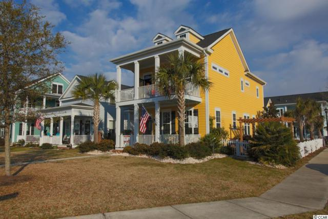 3416 Pampas Drive, Myrtle Beach, SC 29577 (MLS #1800776) :: The Litchfield Company