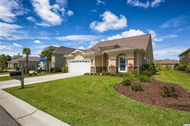 2209 Via Palma Dr., North Myrtle Beach, SC 29582 (MLS #1801884) :: The Trembley Group