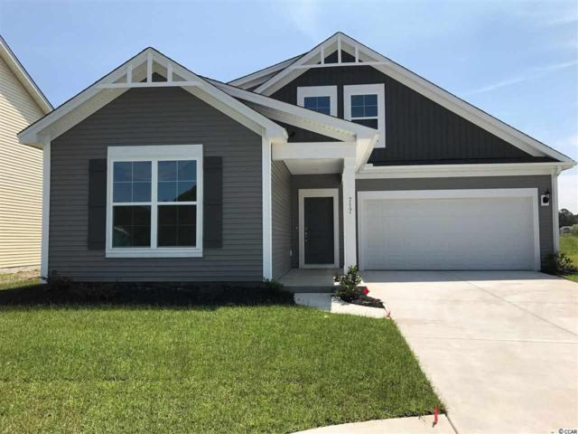 608 Ginger Lily Way, Little River, SC 29566 (MLS #1802930) :: Myrtle Beach Rental Connections