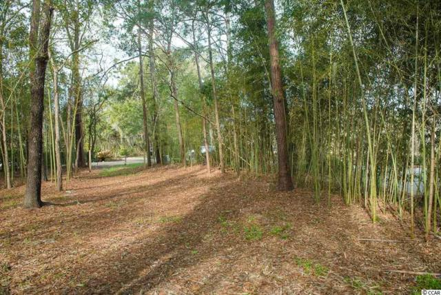 TBD Caretaker Lane, Pawleys Island, SC 29585 (MLS #1803633) :: The Litchfield Company
