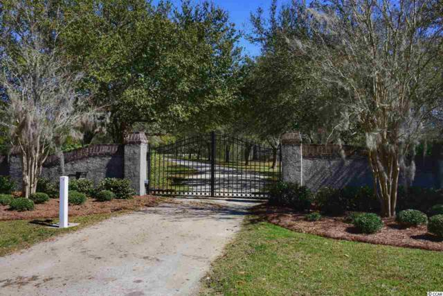 207 Grand Oak Dr., Georgetown, SC 29440 (MLS #1804469) :: Jerry Pinkas Real Estate Experts, Inc