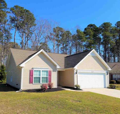 251 Marbella Dr., Murrells Inlet, SC 29576 (MLS #1805288) :: The Litchfield Company