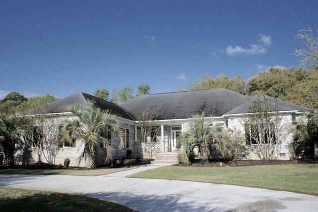 279 Chapman Loop, Pawleys Island, SC 29585 (MLS #1807629) :: Myrtle Beach Rental Connections