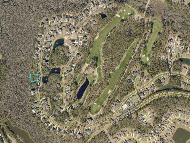 144 Highwood Circle, Murrells Inlet, SC 29576 (MLS #1808821) :: Sloan Realty Group