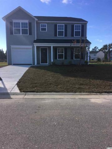 811 Trap Shooter Circle, Longs, SC 29568 (MLS #1809046) :: Right Find Homes