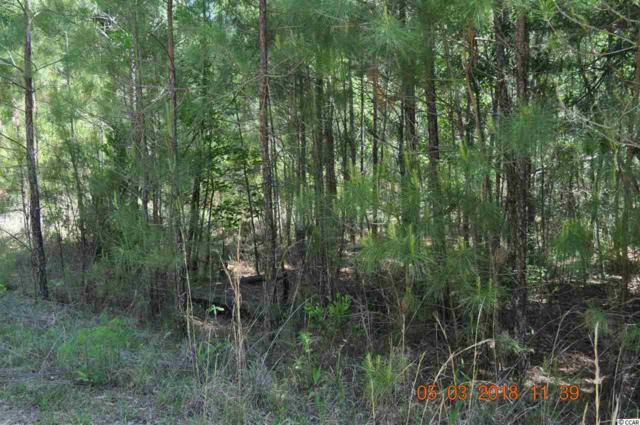 Lot 1014 W Stewart, Georgetown, SC 29440 (MLS #1809606) :: Silver Coast Realty