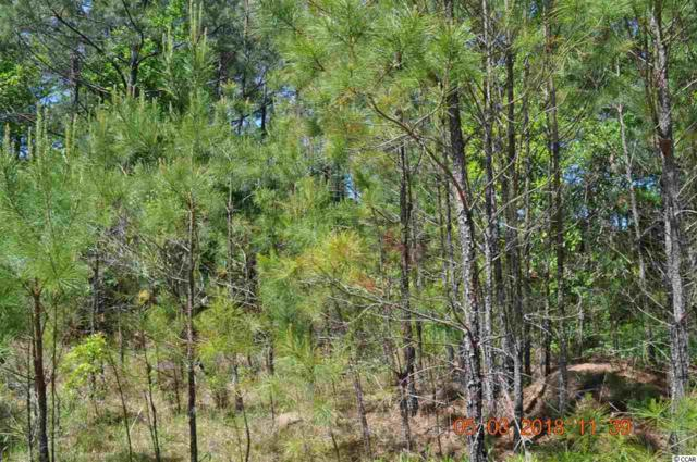 Lot 1042 West Stewart, Georgetown, SC 29440 (MLS #1809610) :: Silver Coast Realty