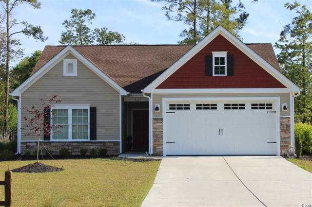 163 Springtide Drive, Conway, SC 29527 (MLS #1810226) :: Myrtle Beach Rental Connections