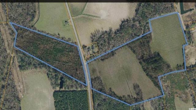 TBD Highway 19, Nichols, SC 29581 (MLS #1814663) :: The Hoffman Group