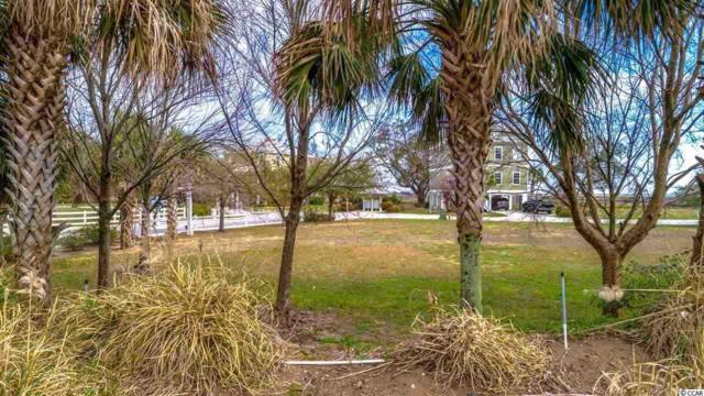 119 Enclave Pl., Pawleys Island, SC 29585 (MLS #1815624) :: James W. Smith Real Estate Co.