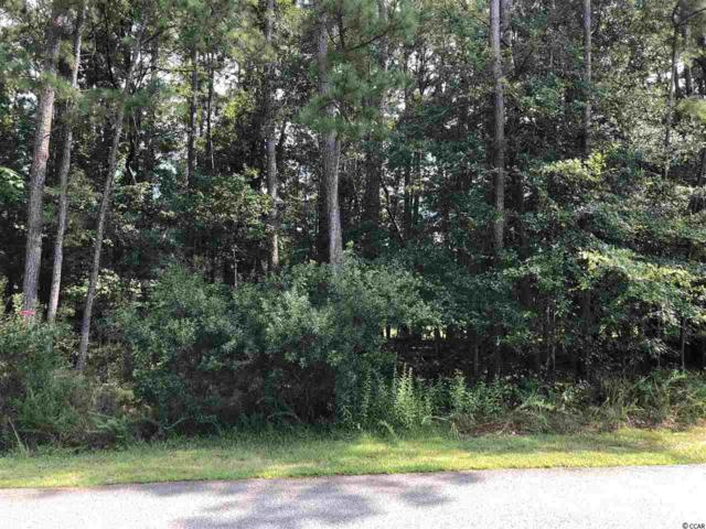 1244 Francis Parker Dr., Georgetown, SC 29440 (MLS #1816455) :: The Litchfield Company