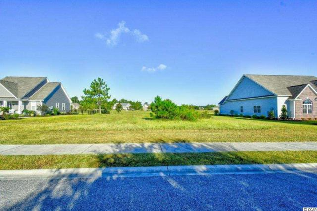 1021 Limpkin Dr, Conway, SC 29526 (MLS #1818211) :: The Litchfield Company