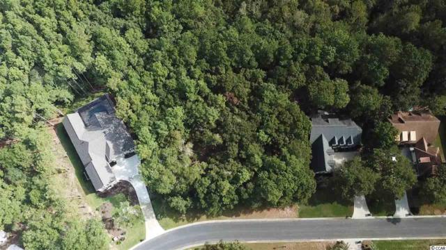 234 Hunter Oak Ct., Pawleys Island, SC 29585 (MLS #1818464) :: The Litchfield Company