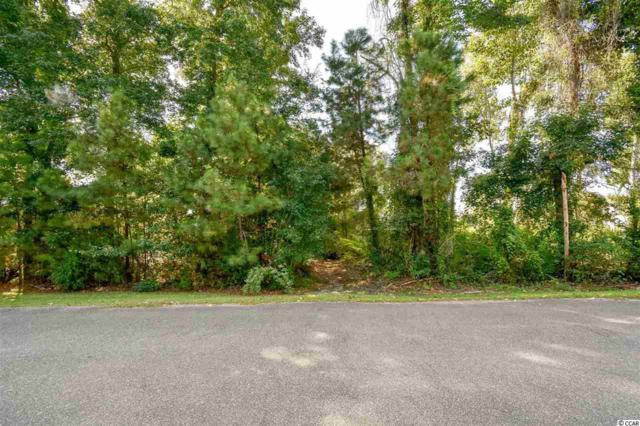 9733 Anchor Dr., Longs, SC 29568 (MLS #1818857) :: Right Find Homes