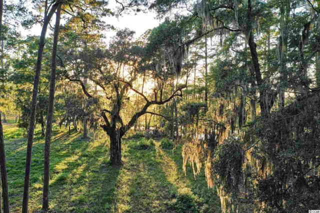Lot D Cabiniss Ln., Pawleys Island, SC 29585 (MLS #1820083) :: Right Find Homes