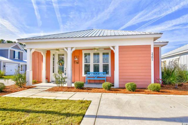 2201 Sea Dune Dr., North Myrtle Beach, SC 29582 (MLS #1821404) :: Right Find Homes