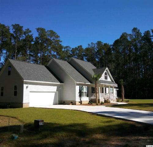 165 Joanna Gillard Ln., Georgetown, SC 29440 (MLS #1821885) :: The Greg Sisson Team with RE/MAX First Choice