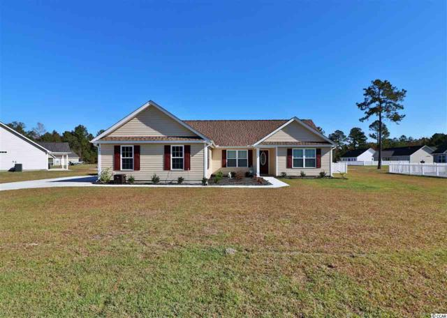 46 Rolling Oak Dr., Georgetown, SC 29440 (MLS #1822555) :: Right Find Homes