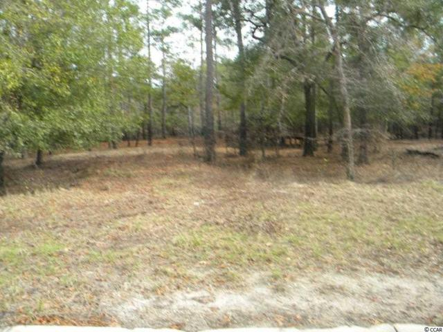 353 Cypress Flat Ct., Conway, SC 29526 (MLS #1823255) :: SC Beach Real Estate