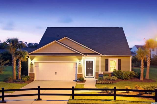 585 Carnaby Loop, Myrtle Beach, SC 29579 (MLS #1823763) :: The Litchfield Company
