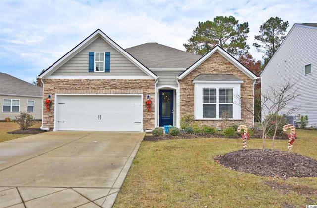 1418 Chanson Ct., Little River, SC 29566 (MLS #1824092) :: James W. Smith Real Estate Co.