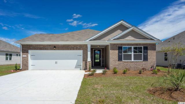 1312 Sunny Slope Circle, Carolina Shores, NC 28467 (MLS #1824109) :: The Litchfield Company