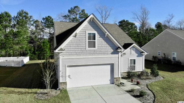 179 SW Lighthouse Cove Loop, Carolina Shores, NC 28467 (MLS #1900188) :: Right Find Homes