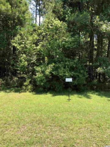 Lot 28 Low Country Loop, Murrells Inlet, SC 29576 (MLS #1904571) :: The Litchfield Company