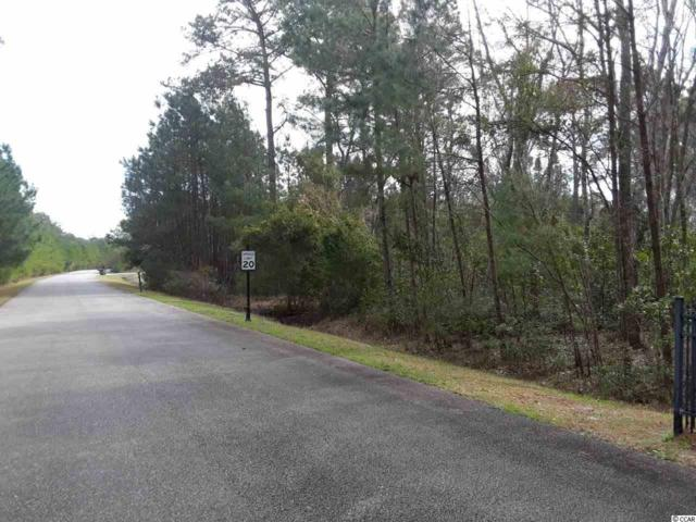 LOT 1 Red Wolf Trail, Myrtle Beach, SC 29579 (MLS #1904684) :: The Hoffman Group