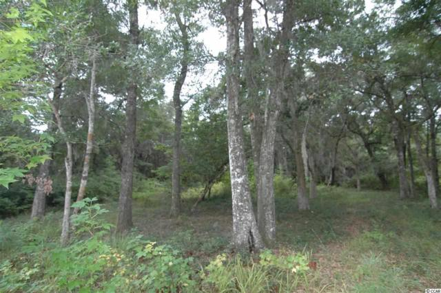 121 Brickwell Ln., Pawleys Island, SC 29585 (MLS #1905396) :: Jerry Pinkas Real Estate Experts, Inc