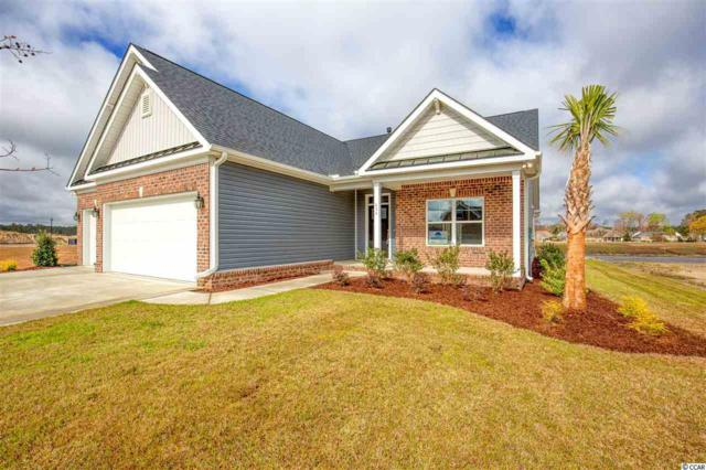834 Waccamaw River Rd., Myrtle Beach, SC 29588 (MLS #1906016) :: The Hoffman Group