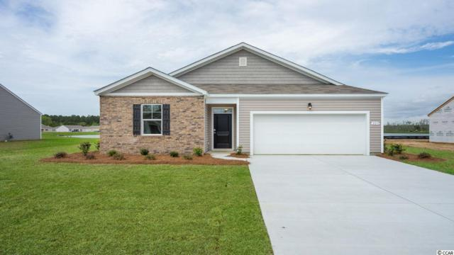 245 Carmello Circle, Conway, SC 29526 (MLS #1907242) :: Right Find Homes