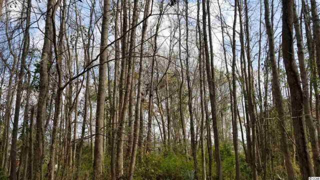 9769 Anchor Dr., Longs, SC 29568 (MLS #1907358) :: Right Find Homes