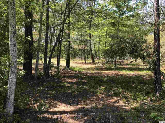 Lot 142 Holton Pl. Sw, Ocean Isle Beach, NC 28469 (MLS #1907500) :: The Litchfield Company