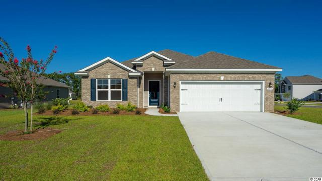 165 Bucky Loop, Murrells Inlet, SC 29576 (MLS #1907767) :: The Greg Sisson Team with RE/MAX First Choice