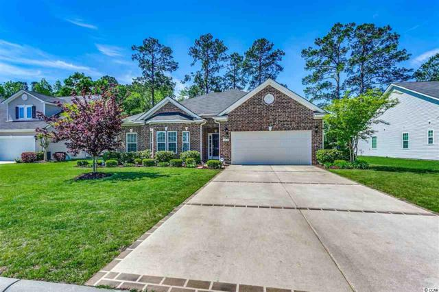 169 Ridge Point Dr., Conway, SC 29526 (MLS #1908774) :: The Litchfield Company