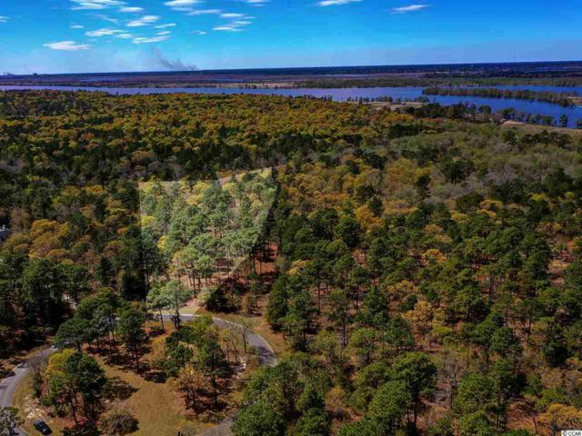 205 Deer Meadow Ln., Pawleys Island, SC 29585 (MLS #1908993) :: Grand Strand Homes & Land Realty